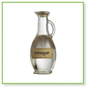 bbq vinegar